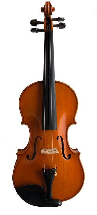 Custom Made Violins
