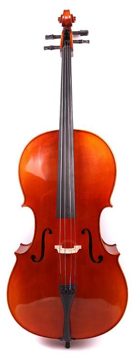 SJVc-02 Intermediate Cello
