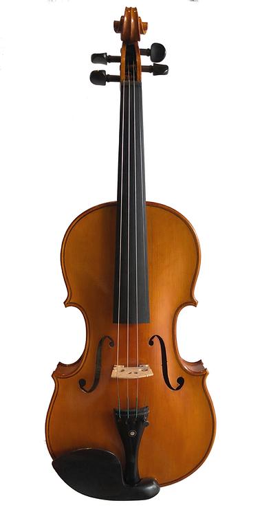 SJV-06 Semi Professional Violin