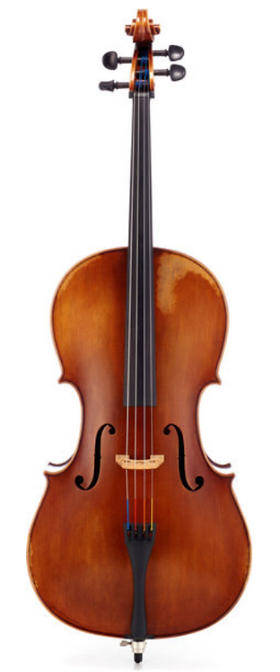 SJVc-06 Professional Cello