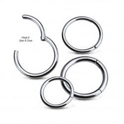 titanium-hinged-segment-clicker-20g-to-8