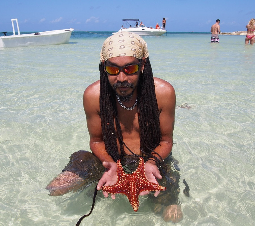 Looking for Starfish in Cayman