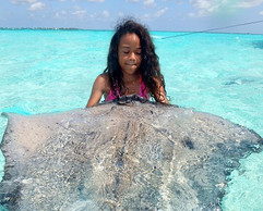 Stingray City Grand Cayman - GRAND TOUR.