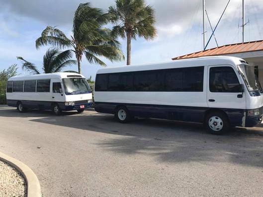 Buses to Stingrayt City