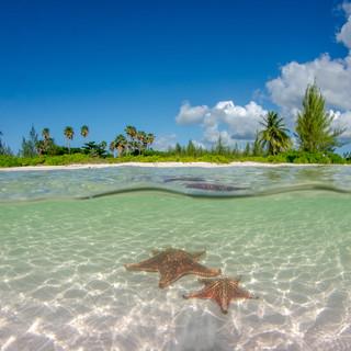 Starfish Point.jpg