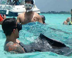 Stingray City adventure