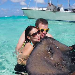 How to kiss a Stingray in the Cayman Islands