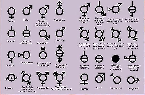 sexos.jpg