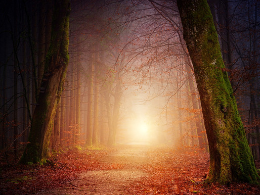 Prophetic Pathways