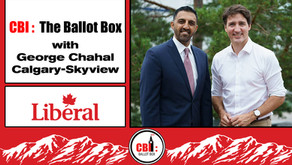 The Ballot Box E9. George Chahal