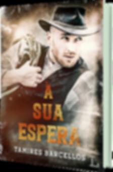À_sua_espera_-_livro_3D.png