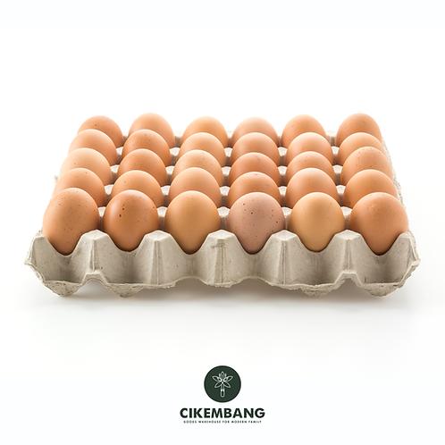 Telur 10Butir (500-600gr) BDG