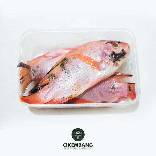 Ikan Nila Merah 500 gr JKT