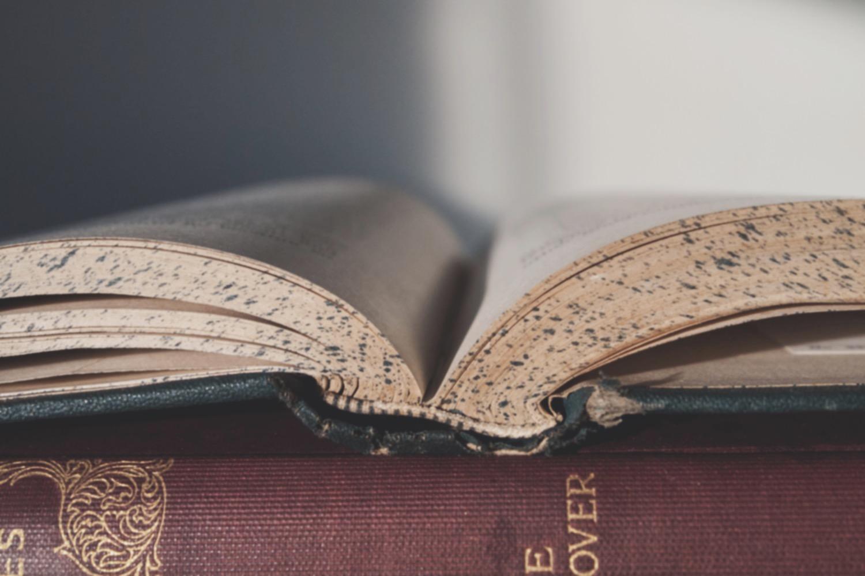 book-reading-literature-classics-159833_edited_edited