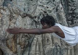 Baobab Yoga