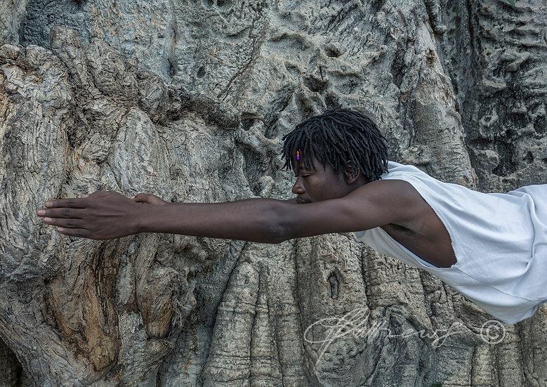'Baobab Yoga' TY09 - Limited Edition Photographic Print