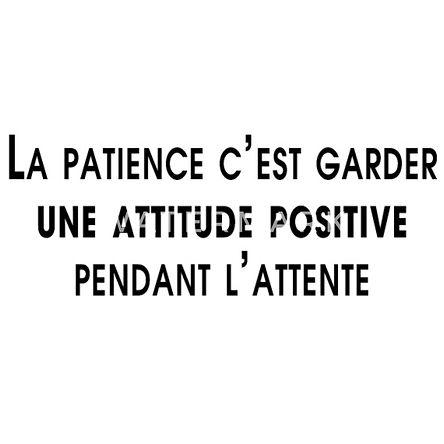 la-patience-est-une-vertue-t-shirt-femme