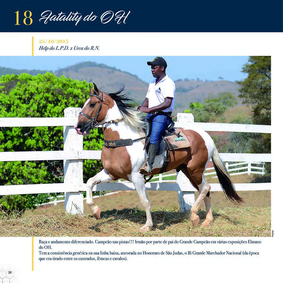 Catalogo_30-09_Página_23.jpg
