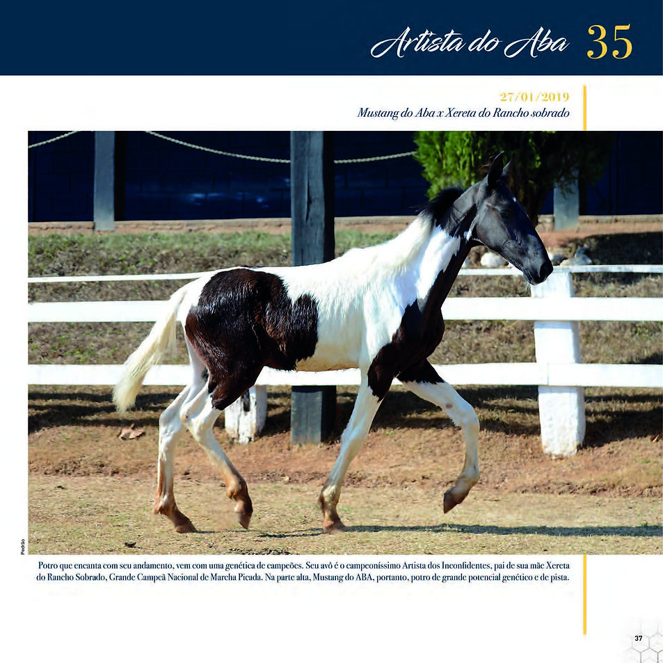 Catalogo_30-09_Página_40.jpg