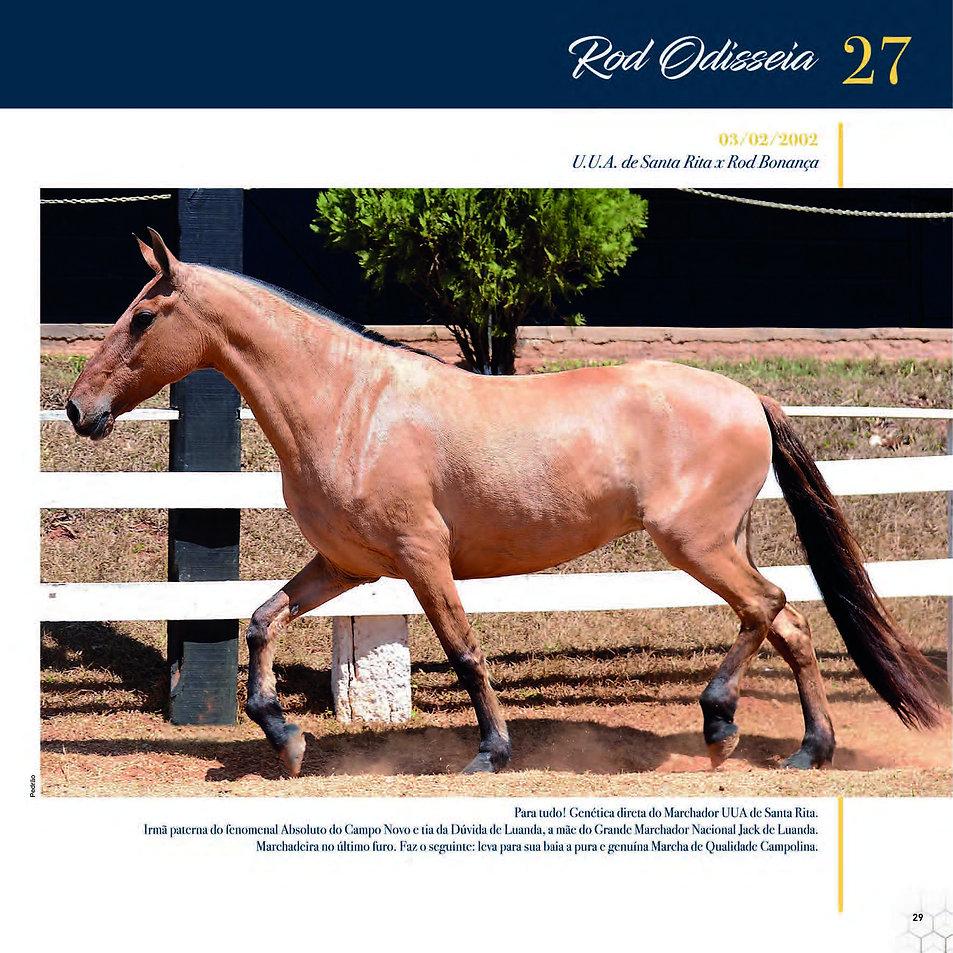 Catalogo_30-09_Página_32.jpg
