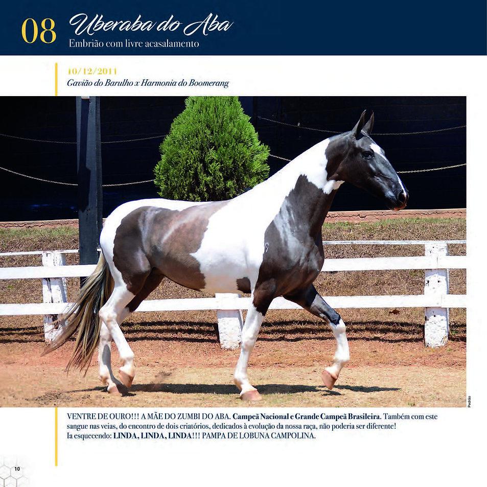 Catalogo_30-09_Página_13.jpg