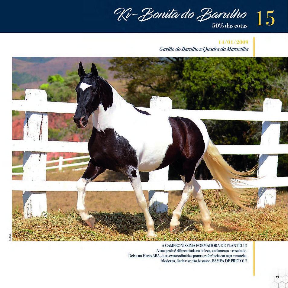 Catalogo_30-09_Página_20.jpg