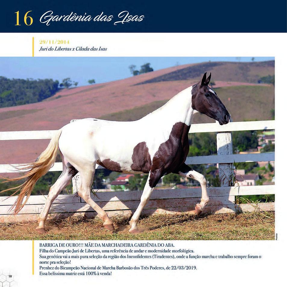 Catalogo_30-09_Página_21.jpg
