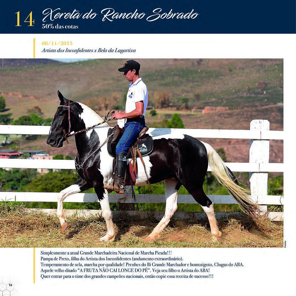 Catalogo_30-09_Página_19.jpg