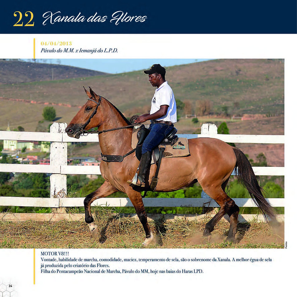 Catalogo_30-09_Página_27.jpg