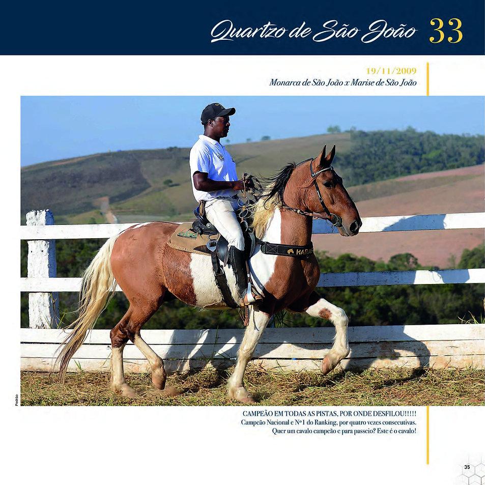 Catalogo_30-09_Página_38.jpg