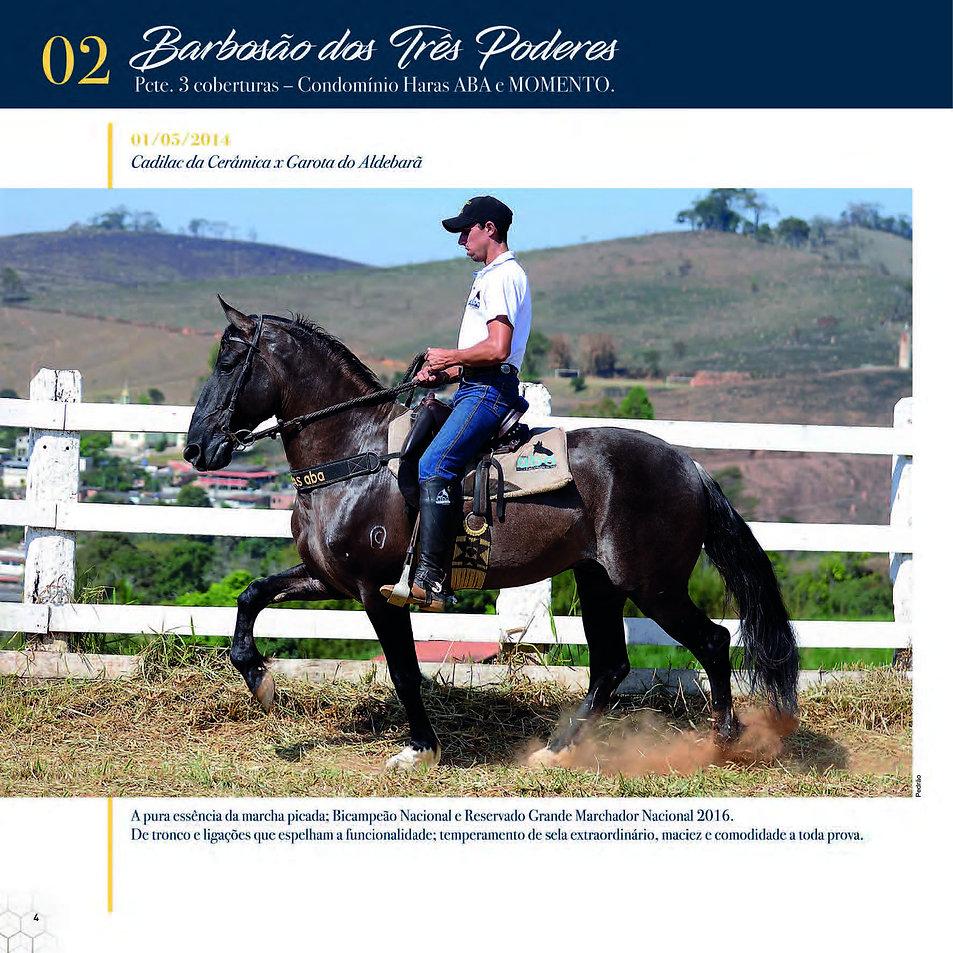 Catalogo_30-09_Página_07.jpg