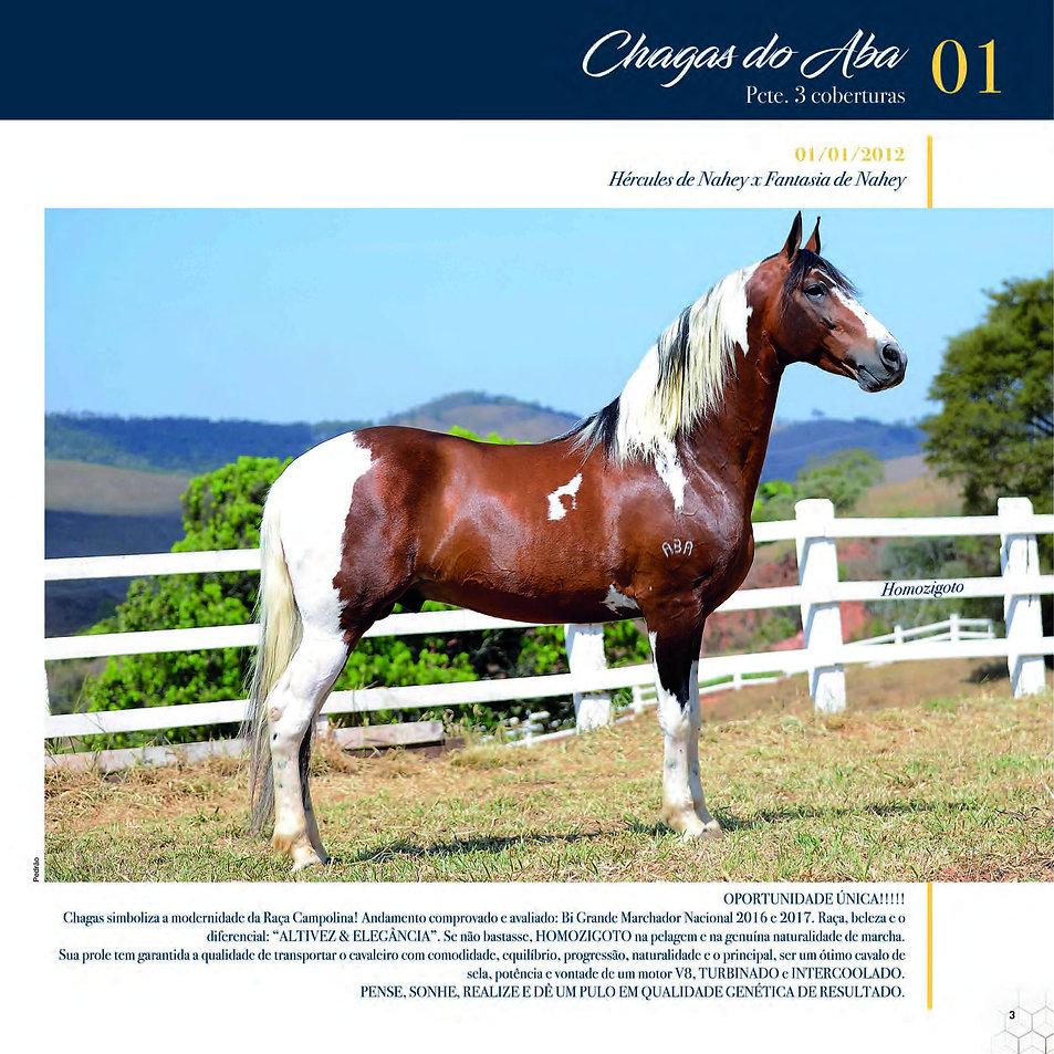 Catalogo_30-09_Página_06.jpg
