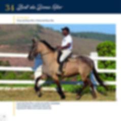 Catalogo_30-09_Página_39.jpg