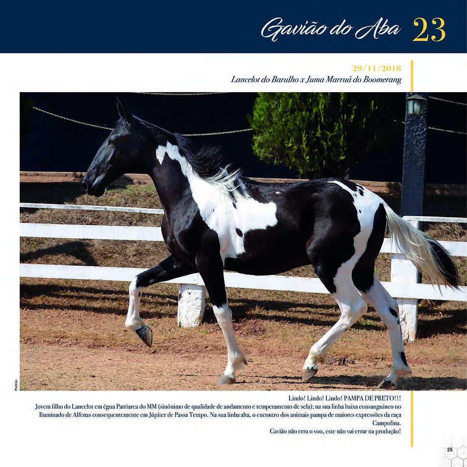 Catalogo_30-09_Página_28.jpg