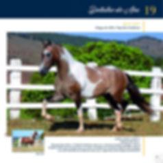 Catalogo_30-09_Página_24.jpg