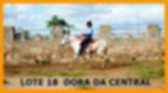 Leilão_Noca_e_Faz_Central_link_Página_21