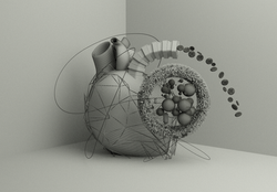 heart wireframe on shaded