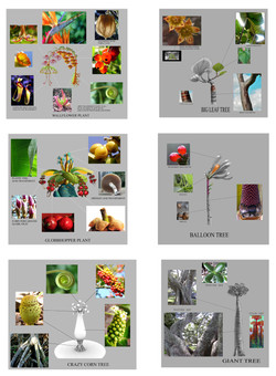 plant ref.jpg