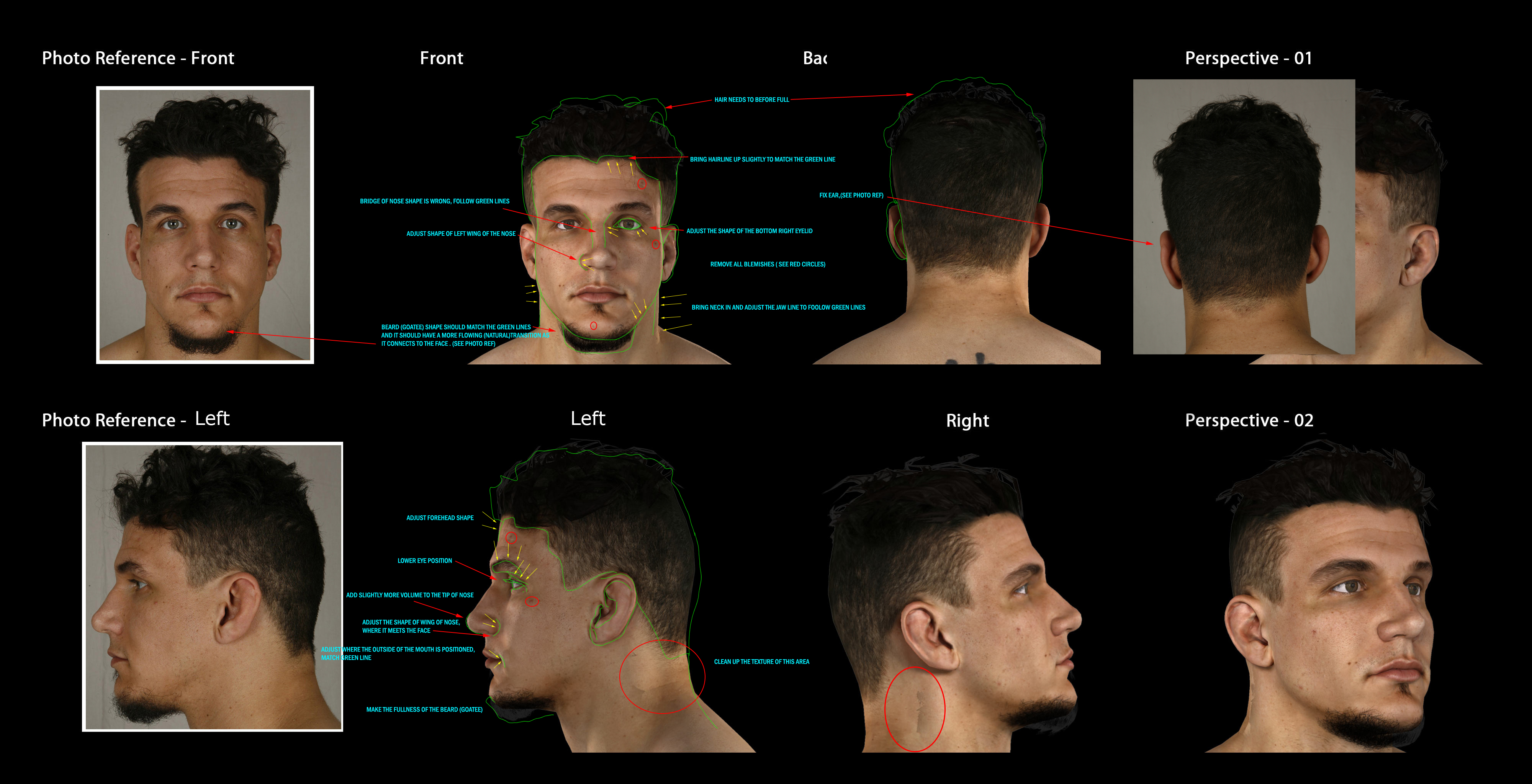 013_frank_mir_head_hi copy.jpg