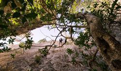 Circuito de Rappel _ Discover The Nature