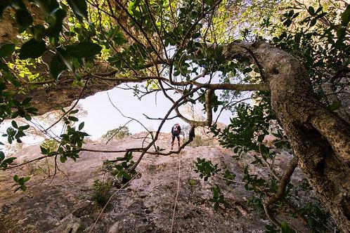 CIRCUITO DE RAPPEL ARRÁBIDA   Discover The Nature   Active Tourism
