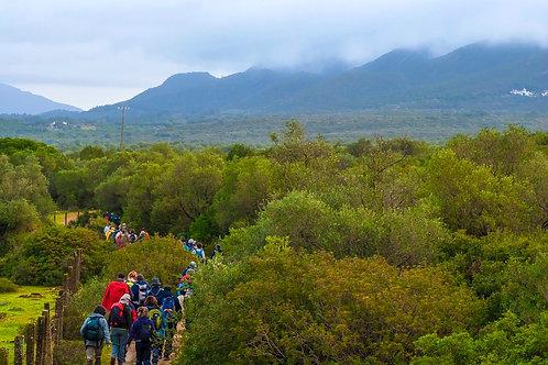 PEDESTRE TOPO DA ARRÁBIDA | Discover The Nature | Team building