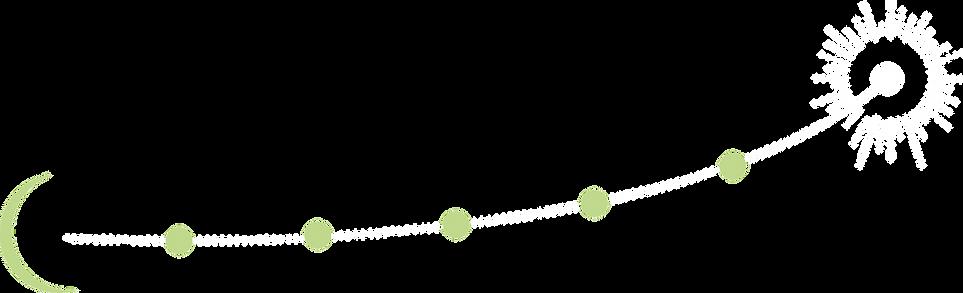 flèche courbe.png