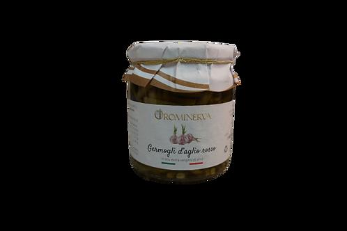 Germogli di aglio rosso in olio extravergine di oliva