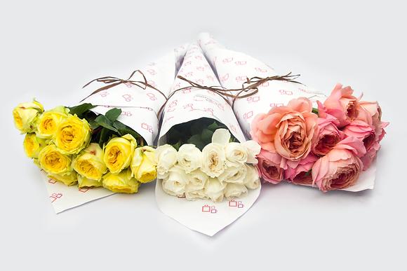 Rosas Inglesas (David Austin)