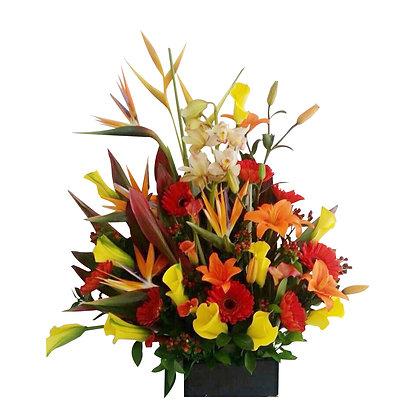 Flores del Paraíso