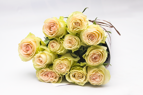 Rosas Standard