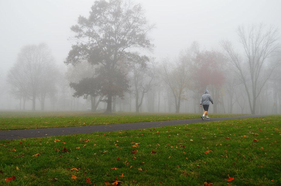 Foggy Fall Morning Walk