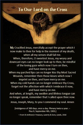Mega  Cards/BookMarks-  Prayer to Holy Face/ Our Lord on the cross