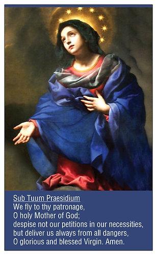 PRAYER CARD -Dolci's Madonna